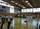 Bayerische Meisterschaft im JKA Karate 2015_5